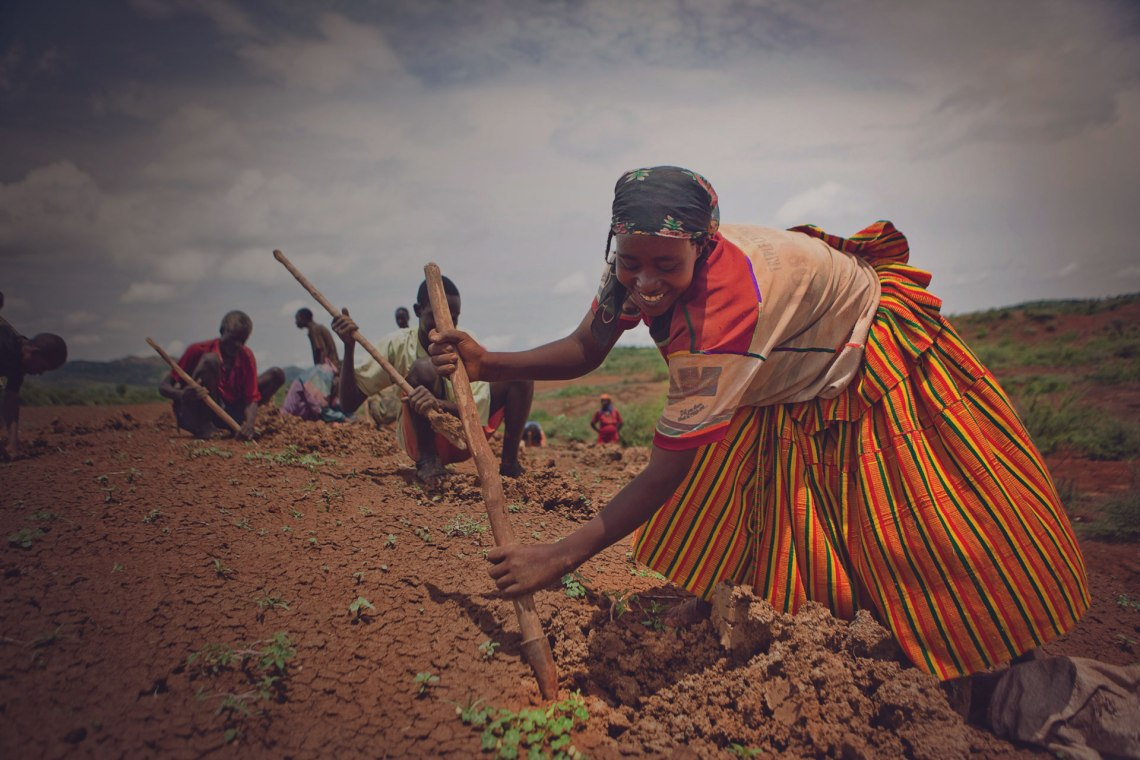 woman-planting-seedlings-with-group-of-farmers-trees-for-the-future-HERO